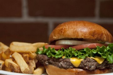Burger Cropped High Res